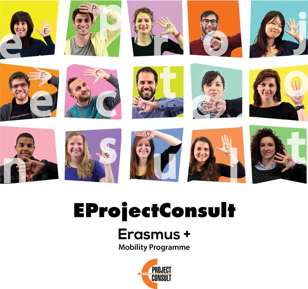 EProjectConsult brochure