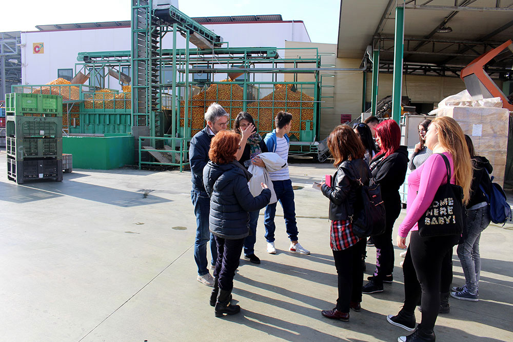 company visit for students and teachers