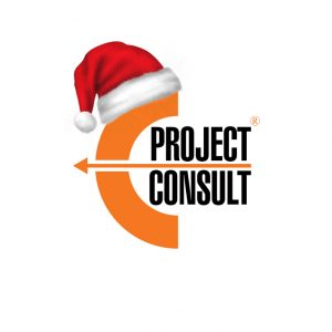 Merry Christmas and Happy New Year from EProjectConsult